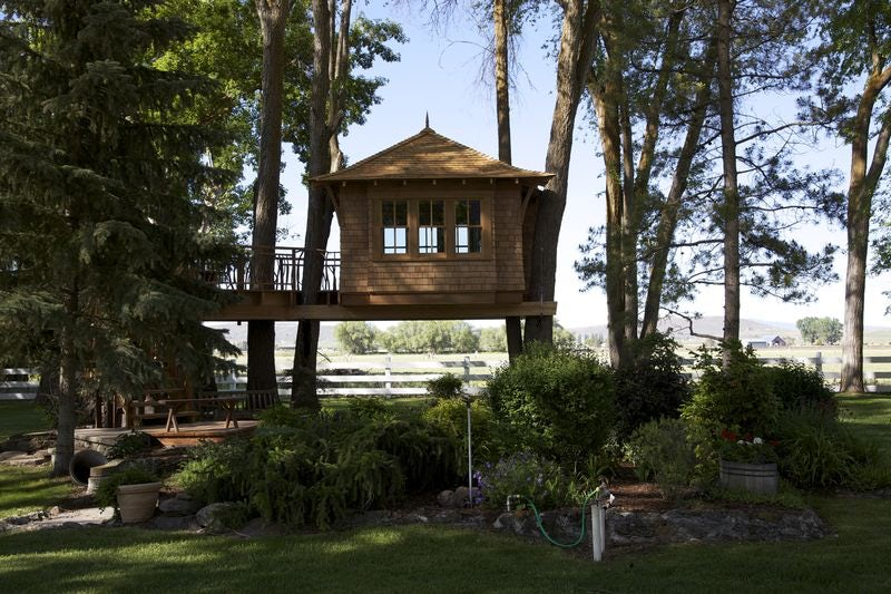 Treehouse Masters Irish Cottage forget hgtv, live in a tree! animal planet's 'treehouse masters