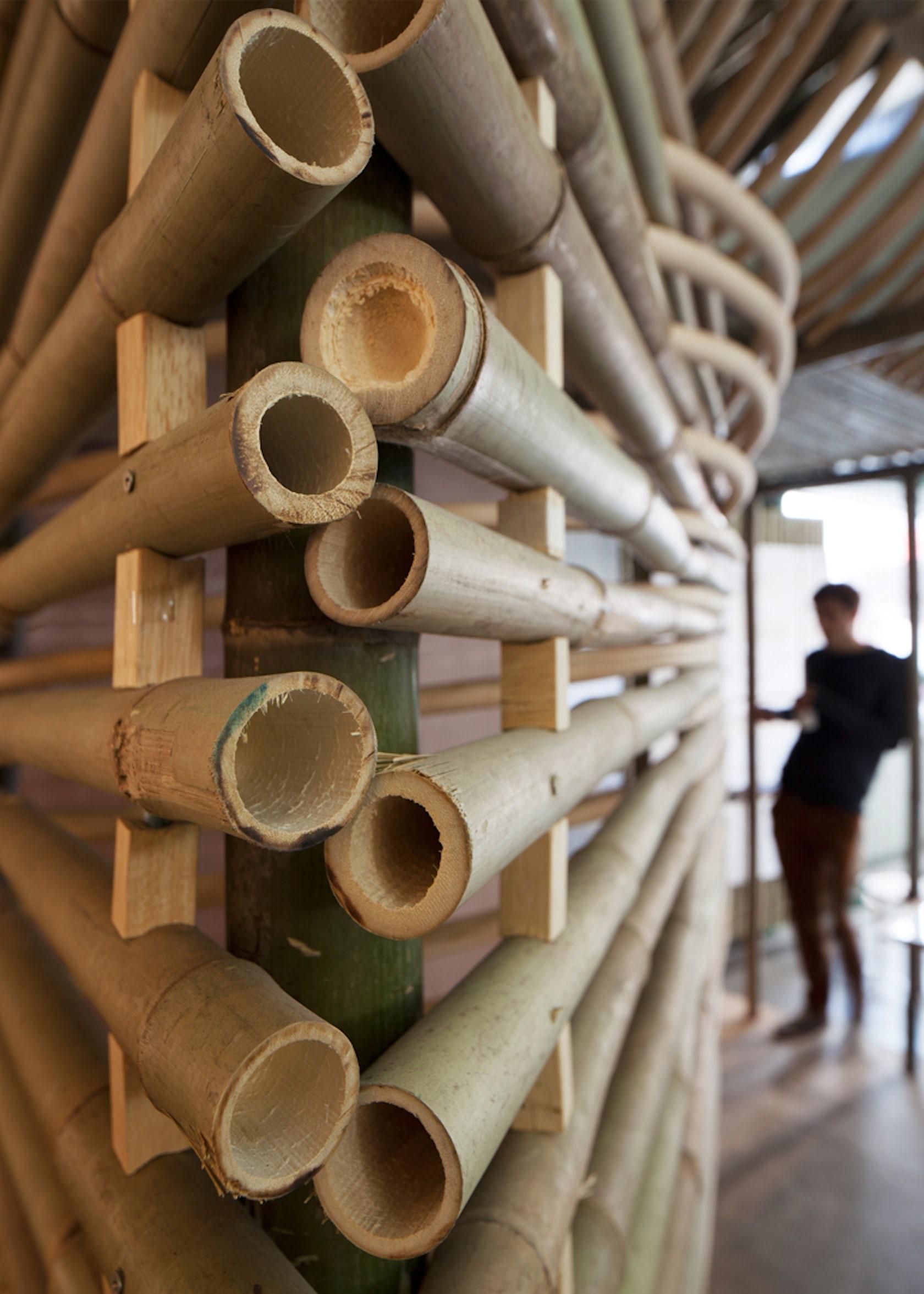 Bamboo micro housing architizer for Canne di bamboo da arredo