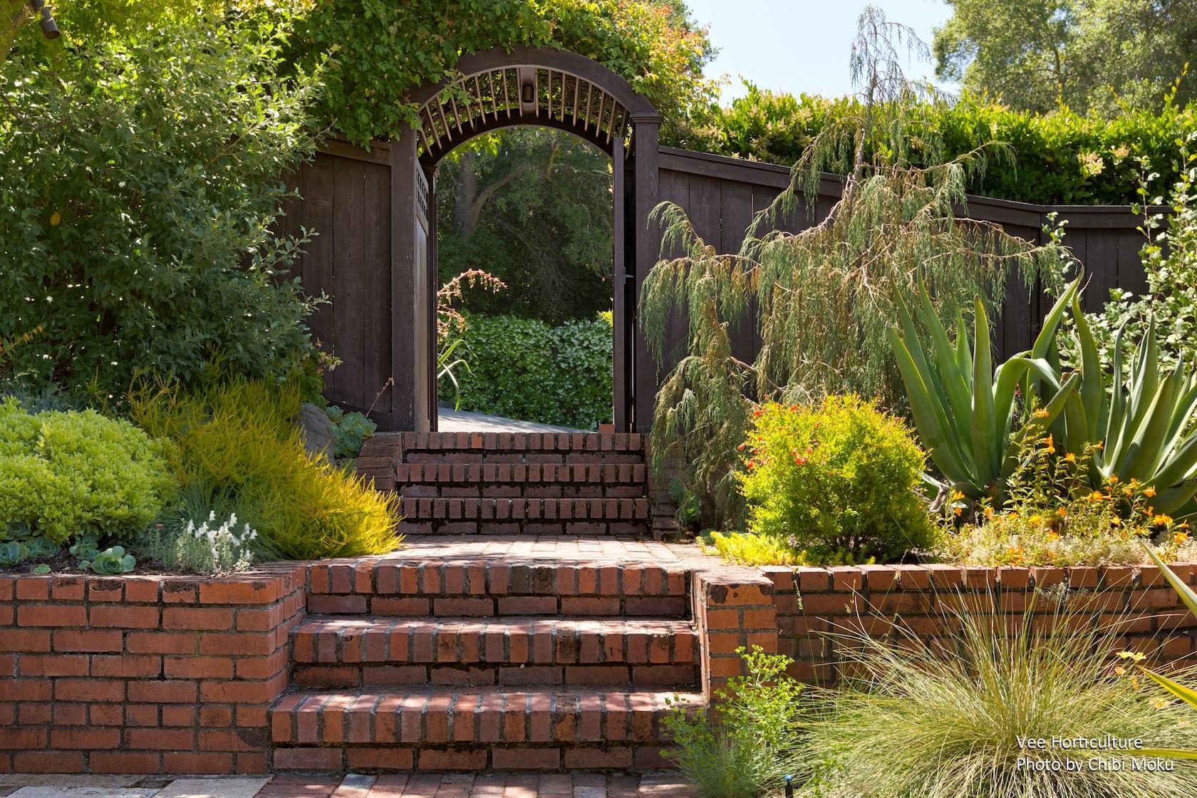 Vee horticulture landscape design for the bay area for Bay area landscape design