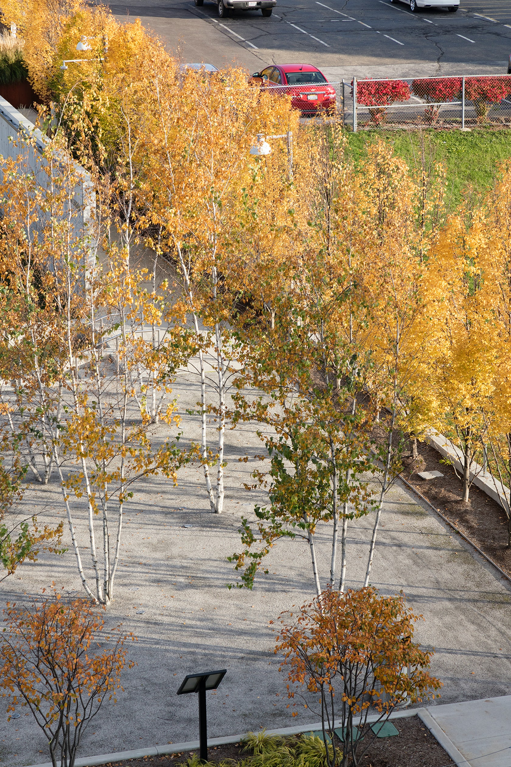 Bud and Susie Rogers Garden at the Akron Art Museum on Architizer