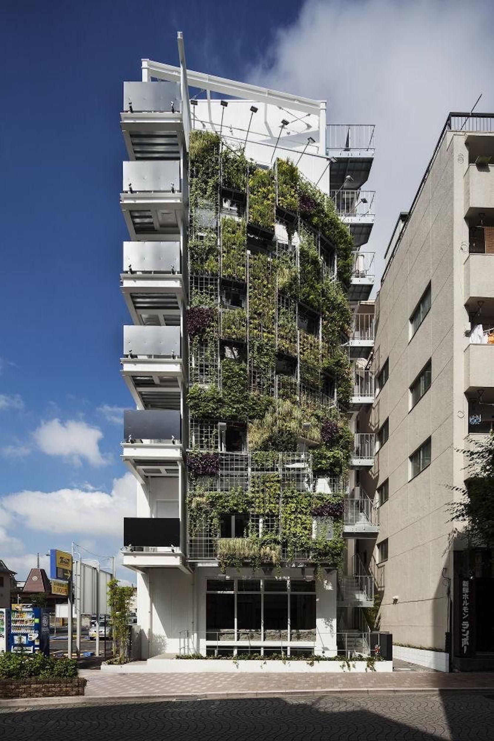 Vent vert architizer for Departamentos minimalistas fachadas