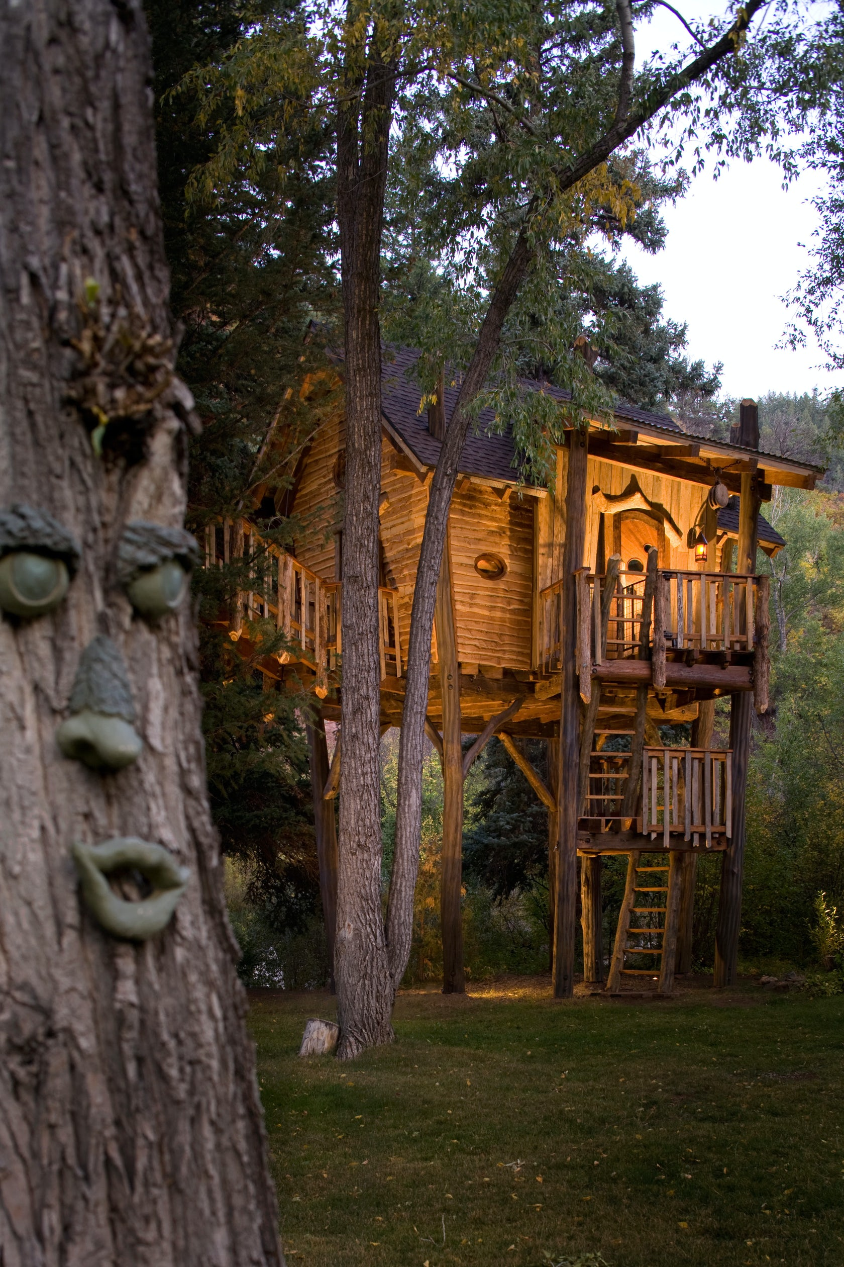 Crystal River Tree House - Architizer