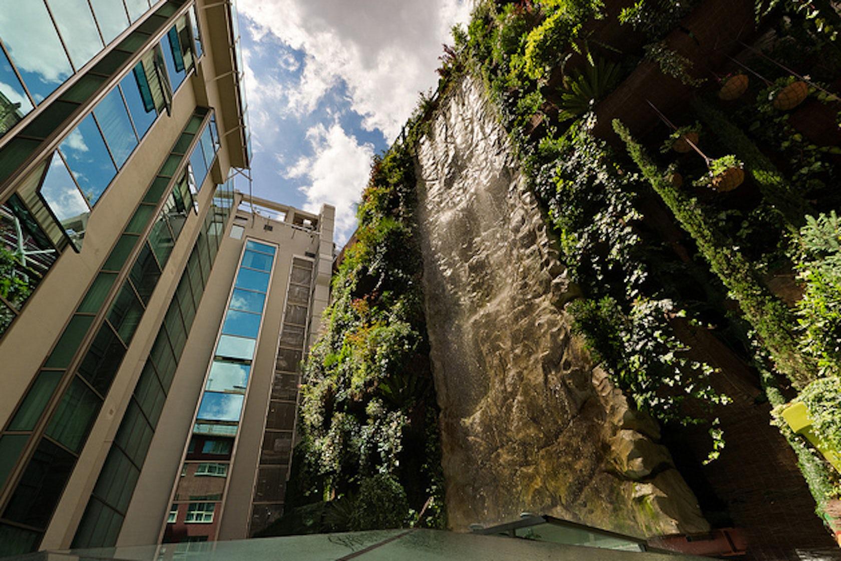 Jard n vertical hotel santo domingo architizer - Jardin verticale ...