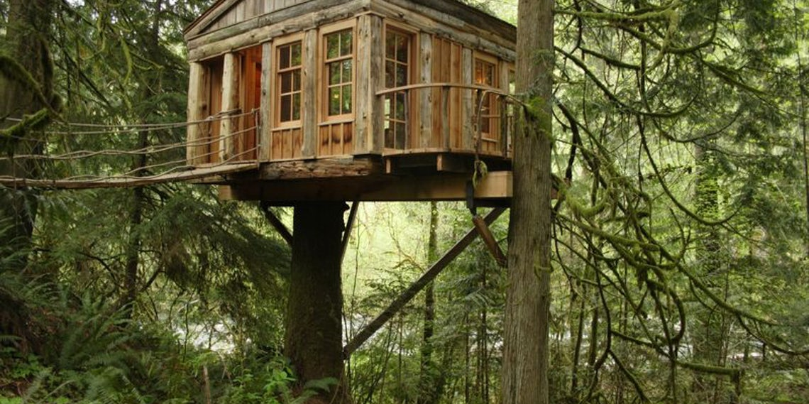 animal planets treehouse masters premieres this month - Treehouse Masters Irish Cottage
