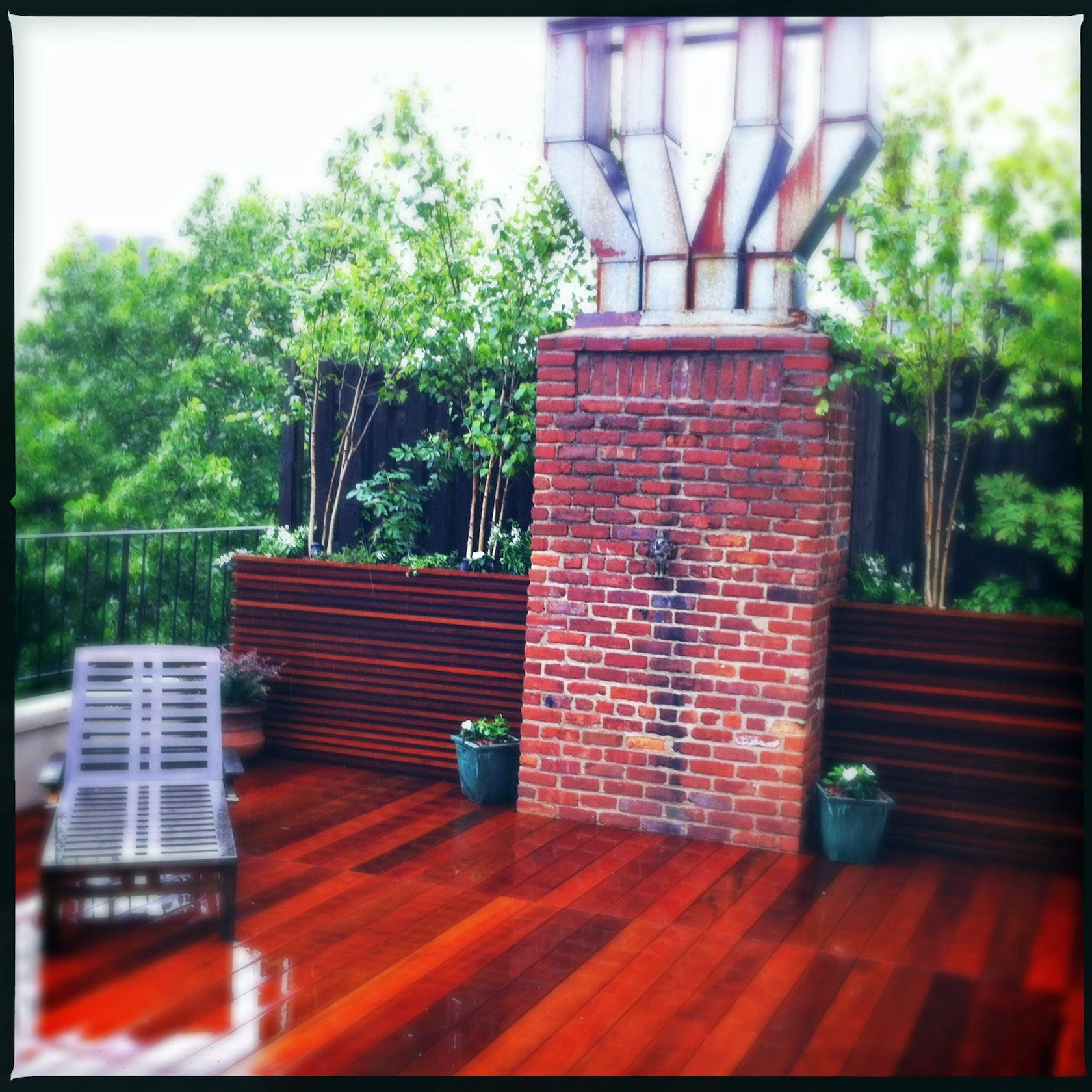Nyc Contemporary Roof Deck Bamboo Amp Birch Tree Terrace