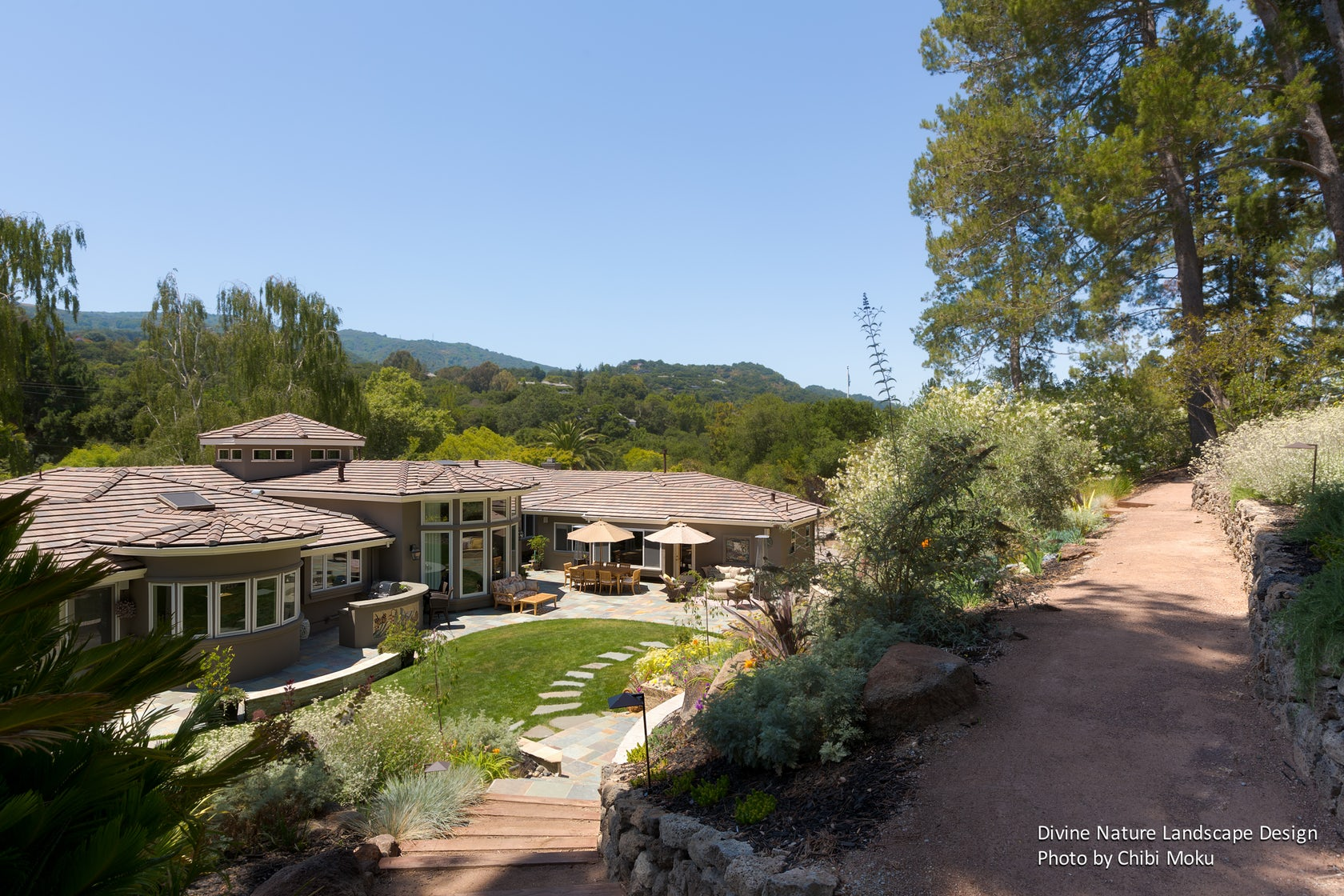 Divine Nature Landscape Design Hillside Restoration