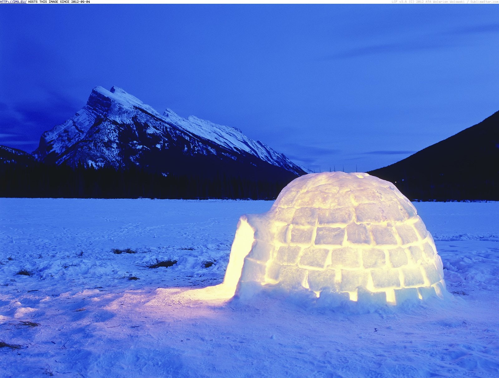 The Coolest Architects on Earth: Must-See Video of How to Build an Igloo and Other Ice Houses