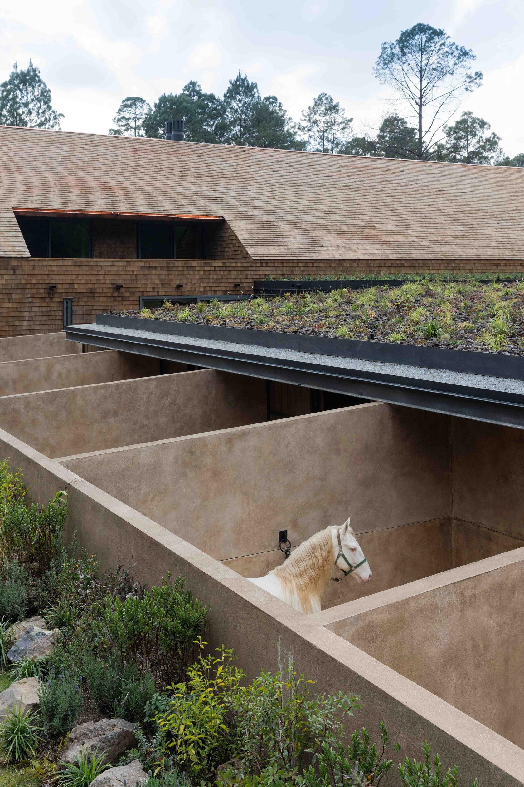 Equestrian Project Architizer