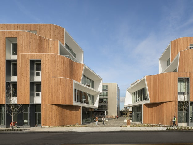 Curved Timber 6 Times Architects Bent Wood To Their Will