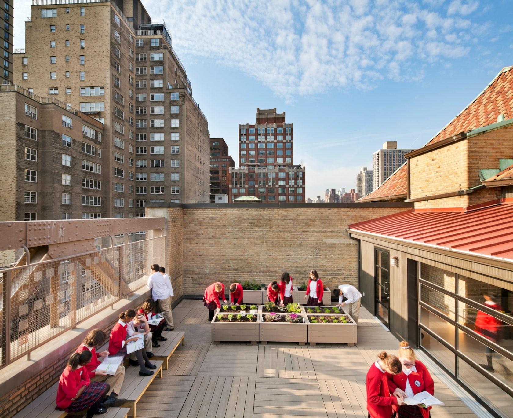 Urban Playground Landscape