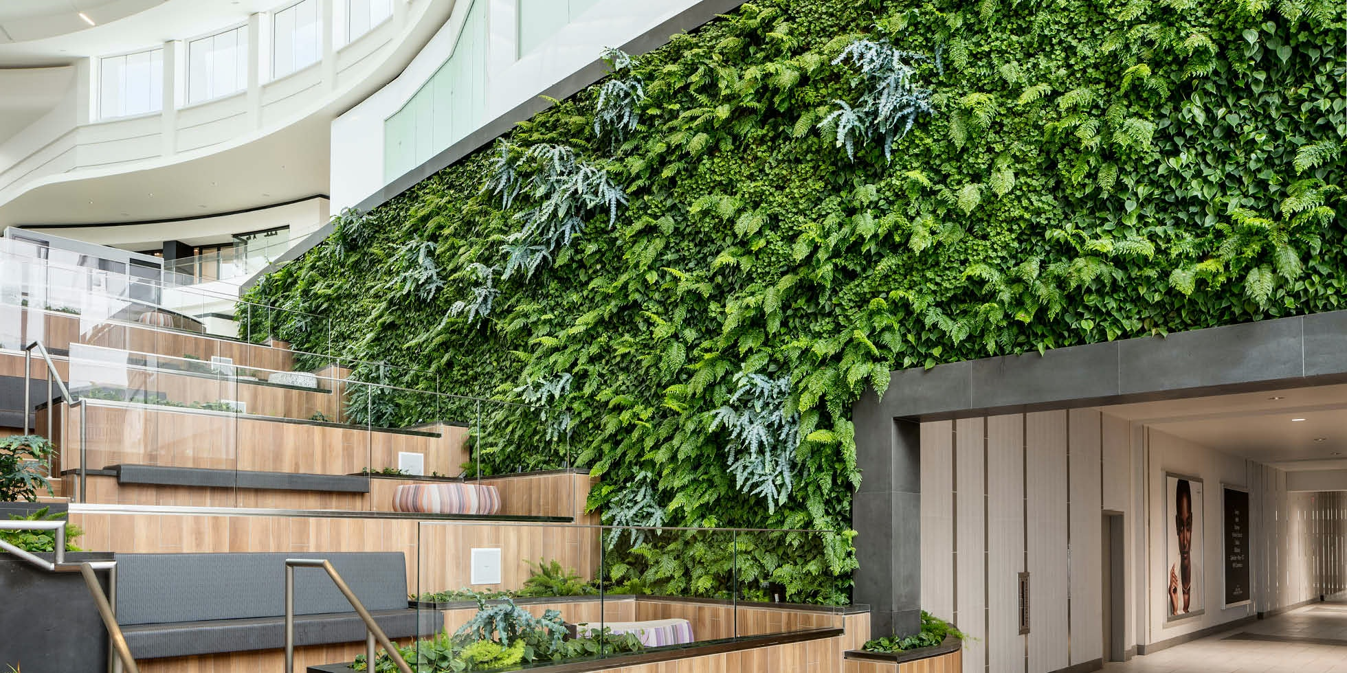 Growing Up: Specifying Living Walls for Every Architectural Typology