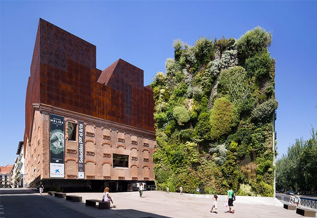 This guide will help you with your research as you explore the possibility  of a green wall for your next project.