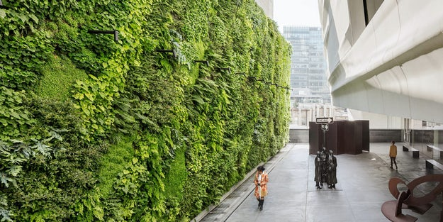 Growing Up Specifying Living Walls For Every