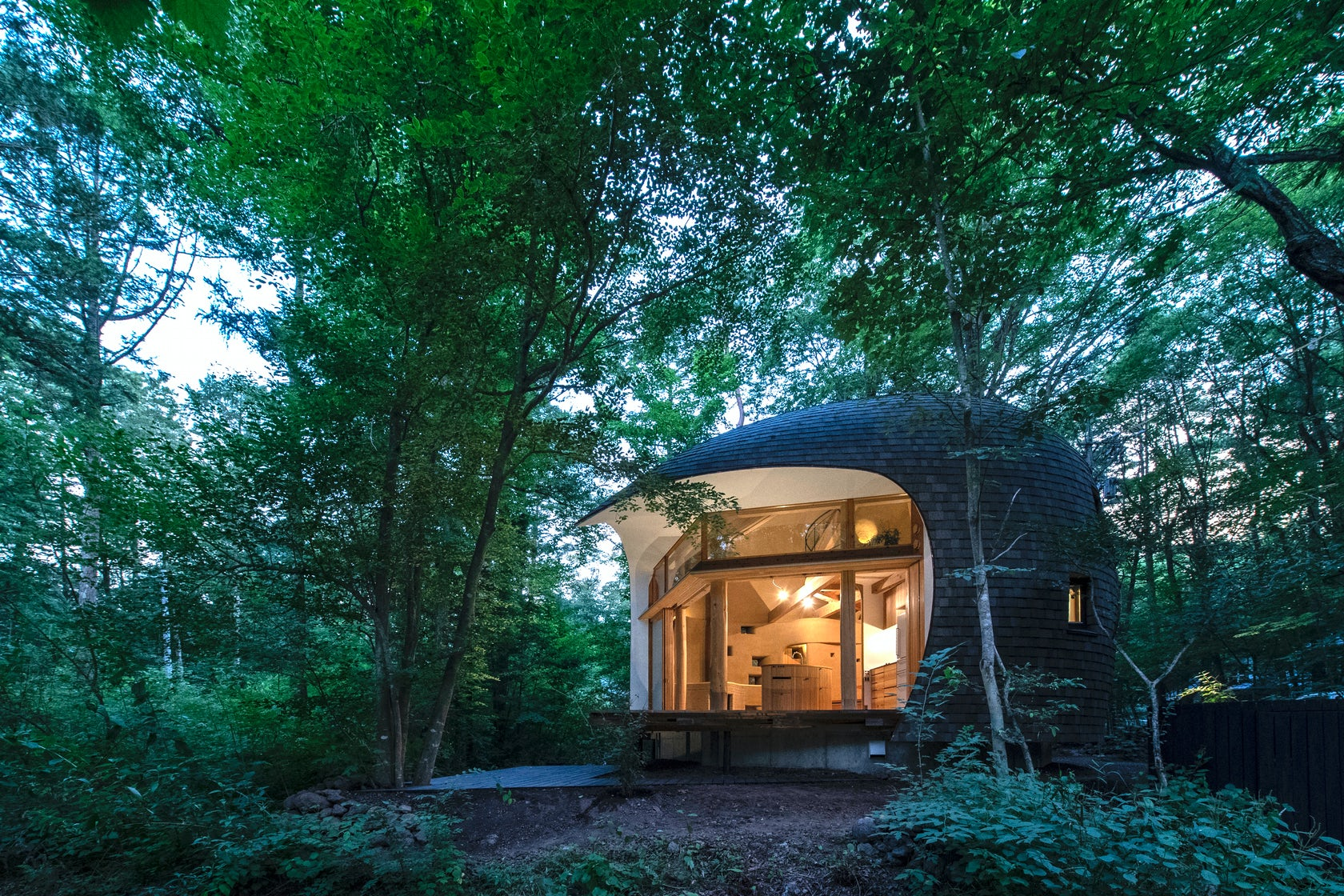 Shell House / The language of forest