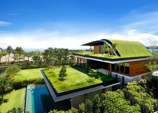 France's New Green Roof Law and the Future of Urban Design