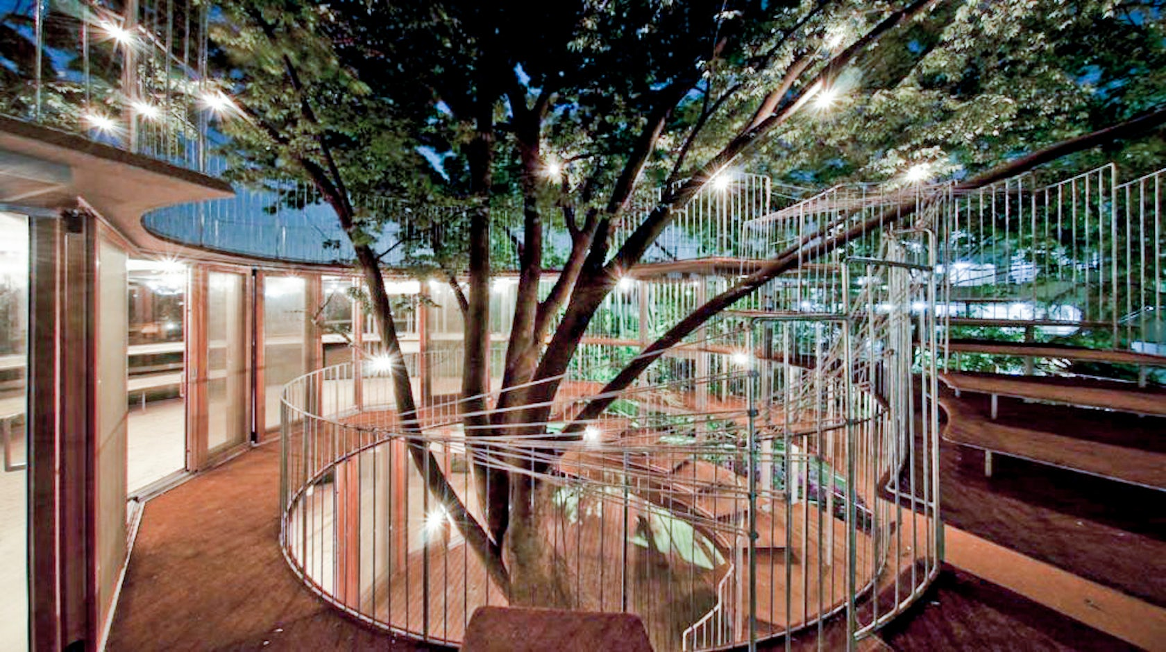 Ring Around A Tree Architizer