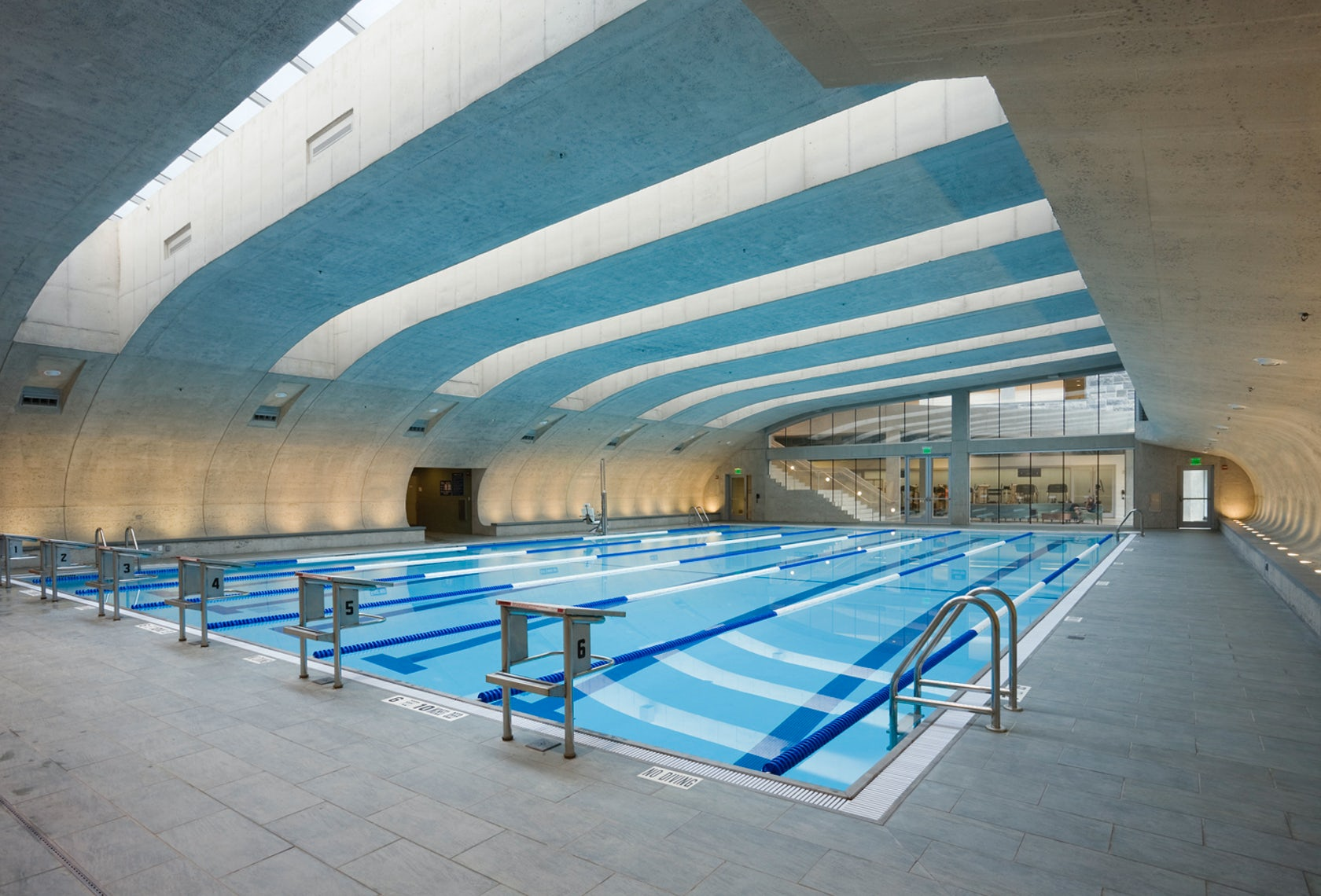 The center for wellness at the college of new rochelle for Pool design center